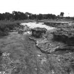 Flood damaged alfalfa field from 1964 flood. Photo dated 7/13/64, east of Augusta MT