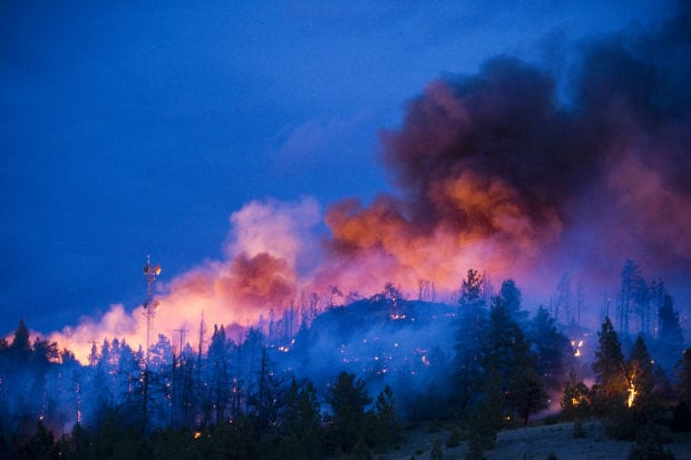 Bucksnort Fire, 2000, Photo credit Helena IR